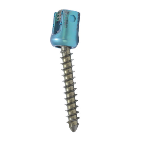 Poly Sacral Screw - Spinal Implant