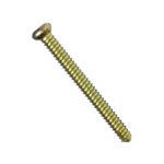 Locking Screw Dia. 5.0 mm - Smit Medimed Pvt Ltd I Orthopedic implant companies